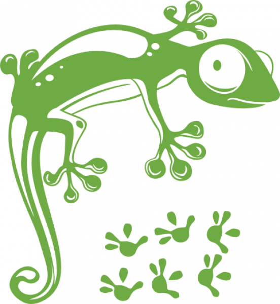 Wandtattoos wandspr che wanddeko wandtattoo gecko - Gecko wanddeko ...